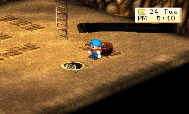 The Best Harvest Moon Back to Nature Tips and Tricks for All Players